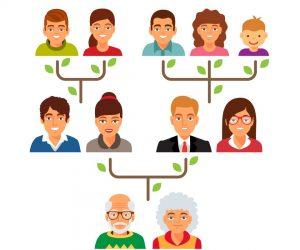 Family genealogy tree diagram chart. Flat style vector illustration isolated on white background.